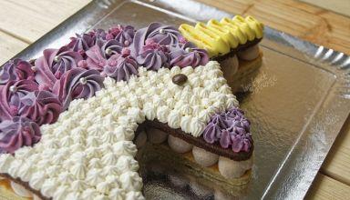 Gâteau licorne aux 2 chocolats  (5)