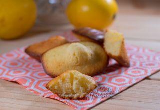 Madeleines au citron réduites  (4)